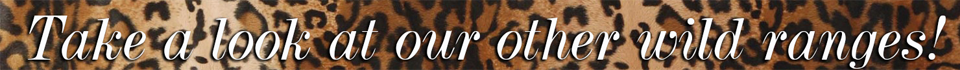 belle lingerie-take a look at our other wild ranges banner