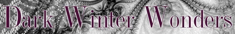 dark winter wonders belle lingerie banner