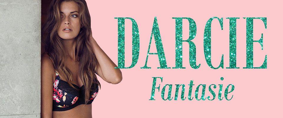 fantasie darcie lingerie ink blog banner