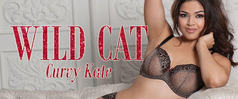 curvy kate wild cat leopard print blog banner