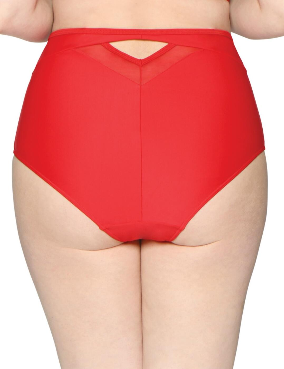 Curvy Kate Sheer Class Bikini Brief High Waist Bottoms CS001505 Womens Swimwear