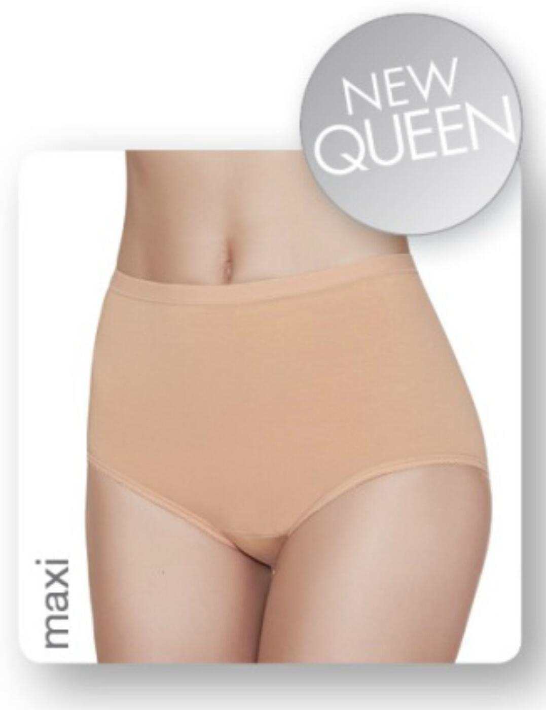 1031643 Janira Essential Maxi Queen Brief (2 Pack) - 1031643 Dune