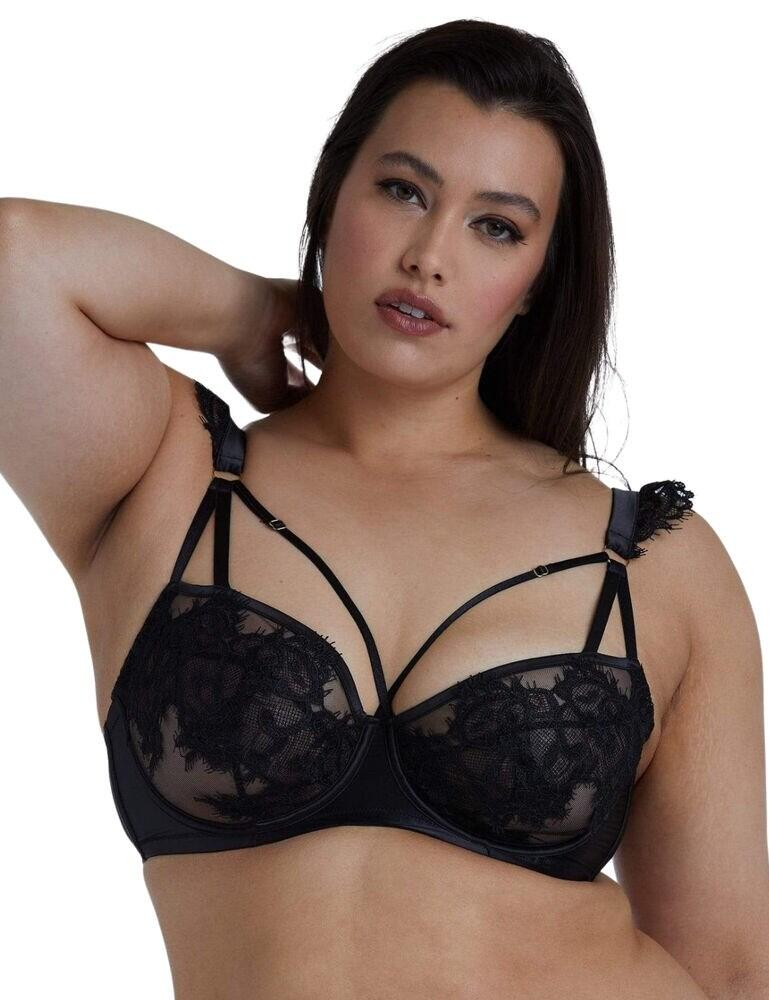 Playful Promises Anneliese Curve Lace Bra in Black